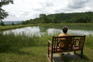 Andrea Upper Pond 2