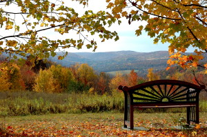 Bench Valley Fall