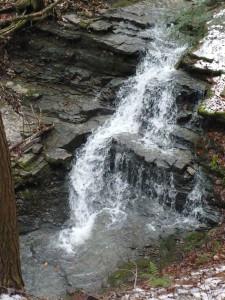 waterfall2011 portrait